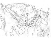 ride9-sketch